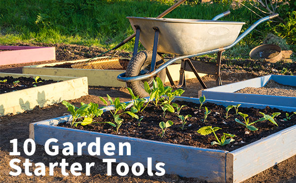 10 Items You Need for a Gardening Starter Kit